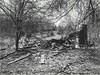 Shufford Cabin (Ruins) SE Bldg. #616