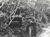 Seasonal Naturalist Heller inspects Bear Trap Exhibit
