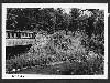 Pine Creek Bridge #3