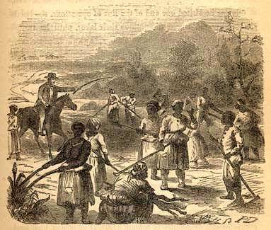 southern slaves vs northern laborers essay This is what african slaves were to the southern colonists  essay on slavery in the southern colonies  the plantation owners had to employ laborers in order to.