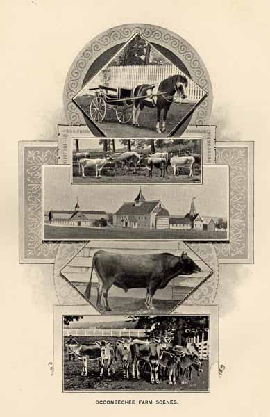 North Carolina  Board of Agriculture  North Carolina and Its