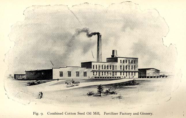 fabrica algodón